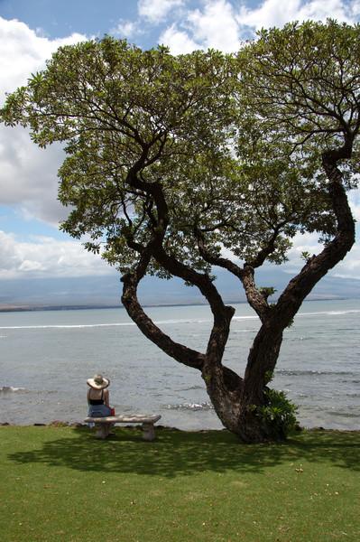 Waterfront, Ma'alaea