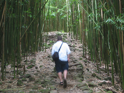 hiking in said bamboo forest