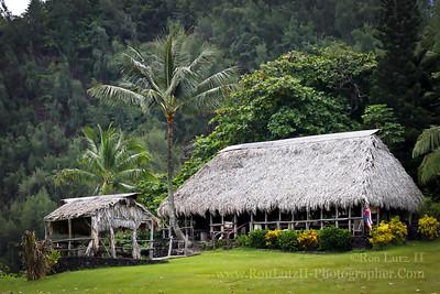 Hale Ali'i - Traditional House