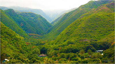 Lush vegetation and steep mountainous terrain.  (Northern coastline)