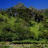 Pu'u Ka'a State Park.