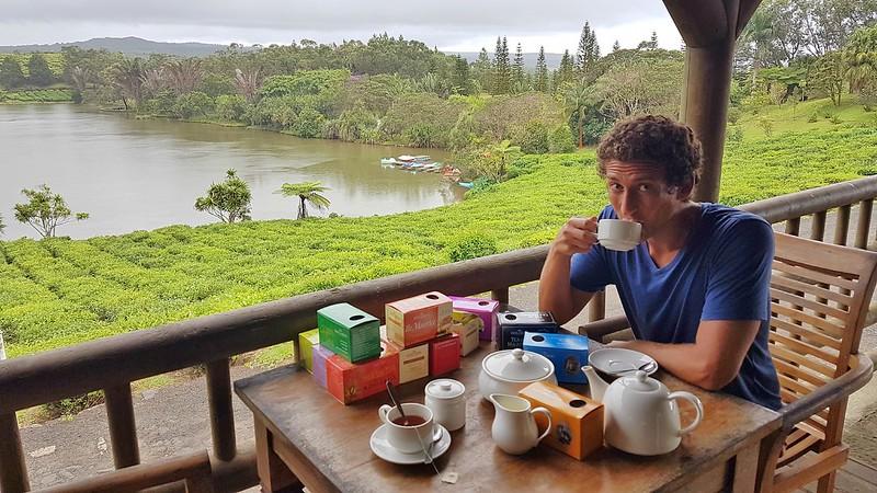 Short Guide to Mauritius - tea factory