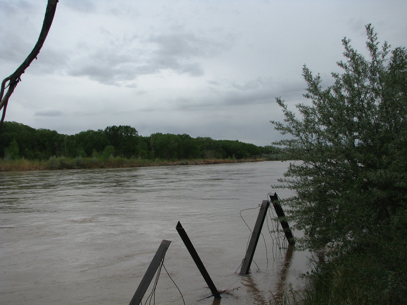 Rio Grande River was moving pretty good, Dave said the steel beams are for shore erosion control.