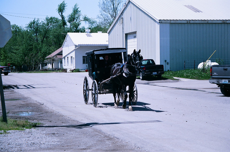 Not seeing this way of life before, it seemed strange to me. Horse and buggie with tail lights.