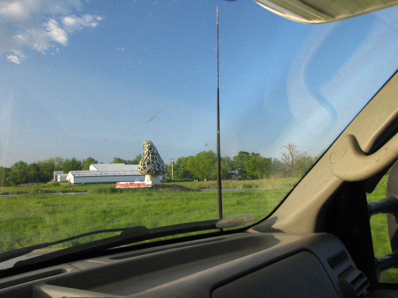 Sometimes during cross country travels one comes across some of those hiway oddity, like this giant mushroom.