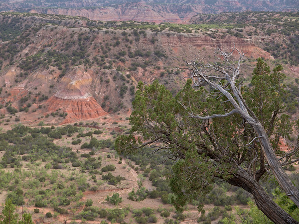 May, 2011- Palo Duro Canyon
