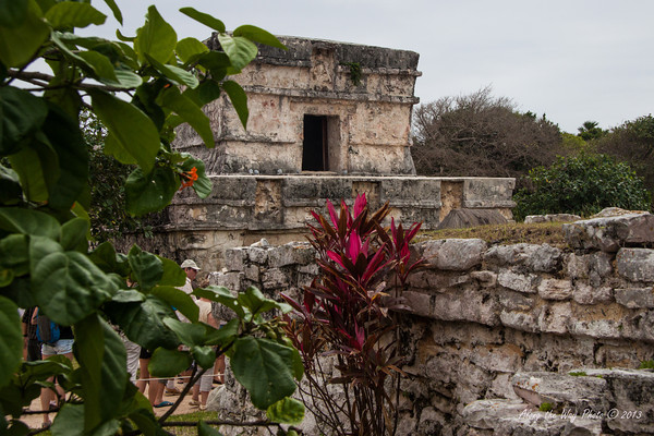 Yucatan-979<br /> Tulum is one of the last Mayan cities inhabited and was built on the east coast of the Yucatan Peninsula. Tulum has 16 foot high walls, 26 feet thick, on three sides with a 39 foot cliff on the fourth side. There are five narrow gateways in the wall.