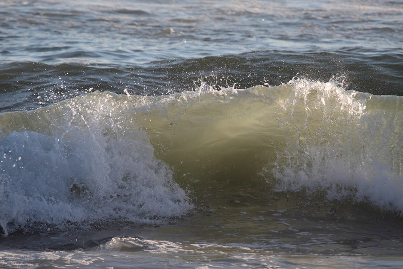 Trying to catch the perfect wave
