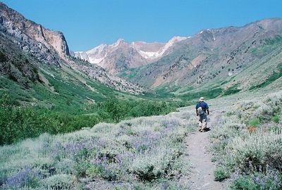 7/7/05 McGee Creek Trail, McGee Canyon