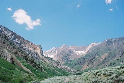 7/7/05 McGee Creek Trail, McGee Canyon. Eastern Sierras, Mono County, CA