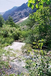 7/7/05 McGee Creek from McGee Trail