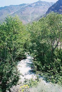 7/7/05 McGee Creek from McGee Creek Trail