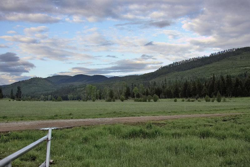 Montana 2006-009306