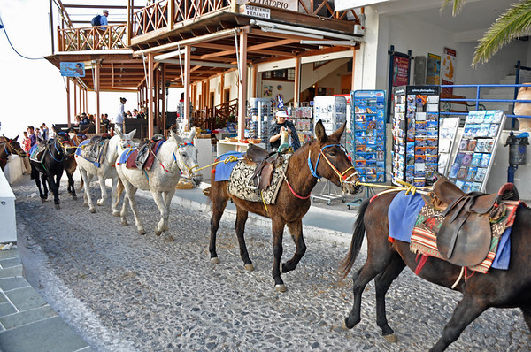The other way to the top -- a mule ride up the zigzag path. Cost: 5 Euros.  Shops and restaurants line the narrow streets. No cars in this area.  Santorini, Greece
