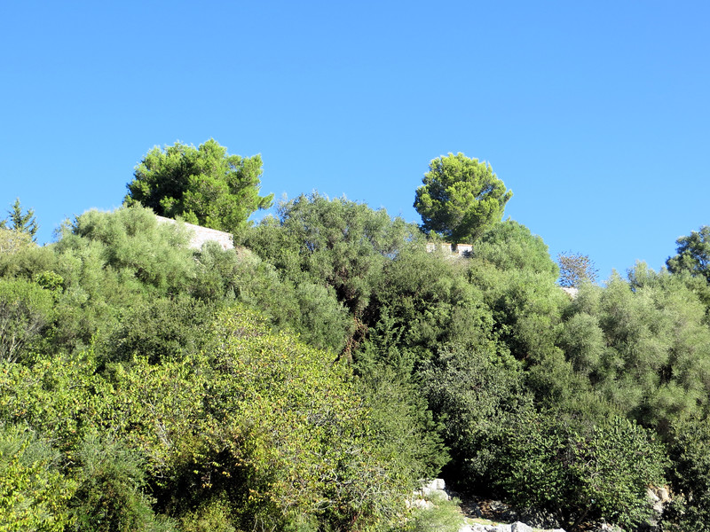 Following the model of Greek city states, Butrint had an acropolis, which housed defensive structures designed to protect the city from invaders.  This is looking up at the hilltop from the excavations below.