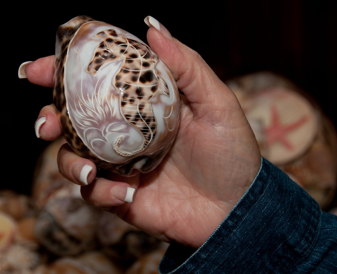 Cameo Shop - Sandy holding Cameo that was part of a seashell