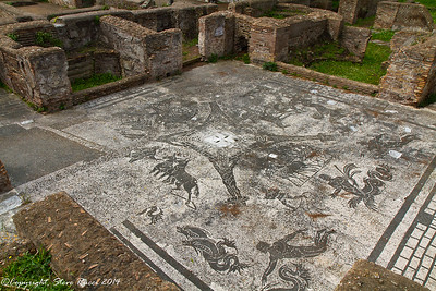 Mosaic floor in the baths - Terme dei Cisiarii, Ostia Antica