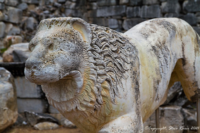 Stone carving of a lion at the Temple of Apollo - Didyma, Turkey