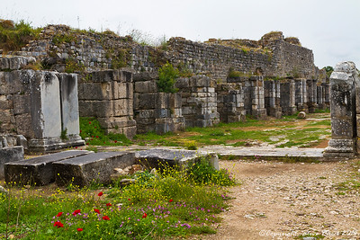 The Faustina Baths at Miletus, Turkey