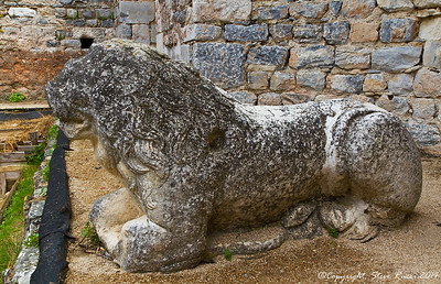Stone carving of a lion in the Faustina Baths at Miletus, Turkey