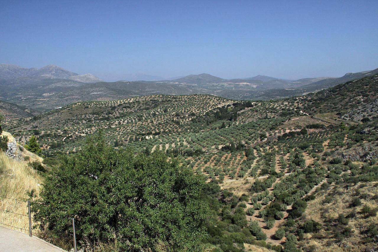 Mycenae Ruins - Orange trees in Distance