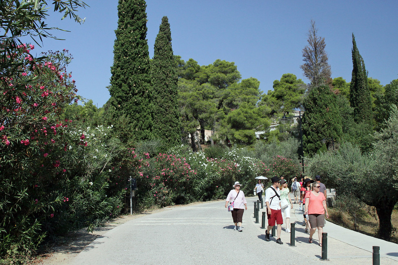 Entrance to Ancient Olympia Ruins