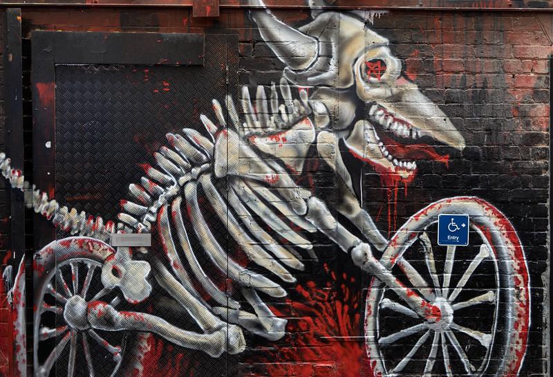 Skeletal rider