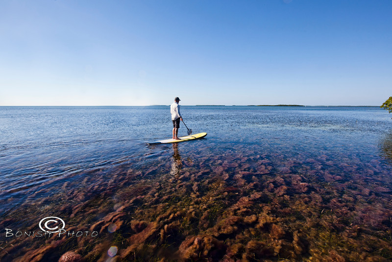 Paddling around the Islands - Mellow Ventures Key West - Photo by Pat Bonish