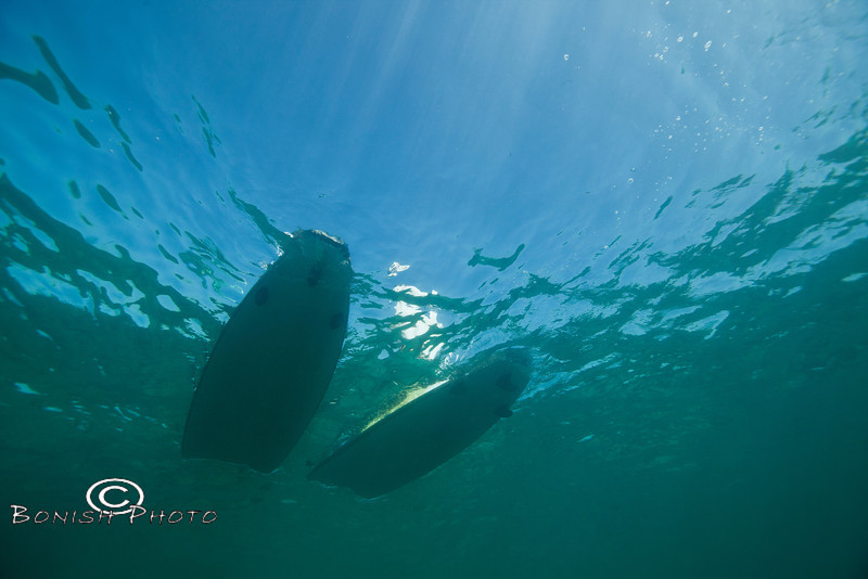 Fish Eye View of the Paddle Boards above me - Mellow Ventures Key West - Photo by Pat Bonish