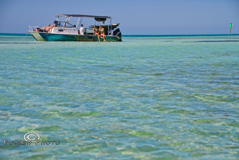 Crystal Clear Waters - Mellow Ventures Key West - Photo by Pat Bonish
