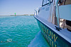 Heading to the Reef with Mellow Ventures Key West - Photo by Pat Bonish
