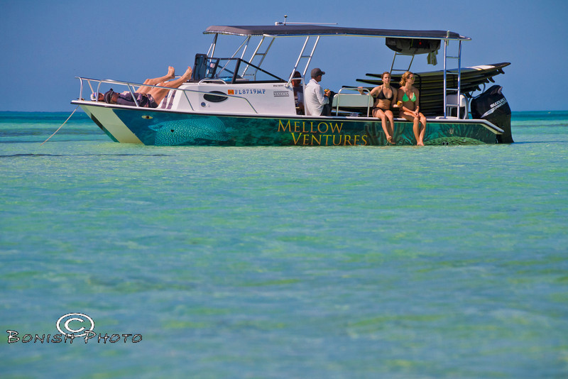 The Proper way to spend an afternoon in Key West - Mellow Ventures Key West - Photo by Pat Bonish