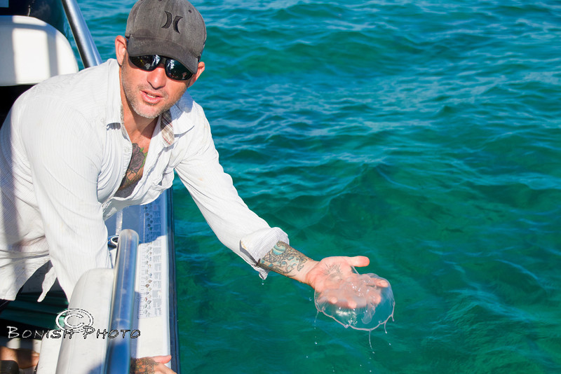 Rob showing us a Moon Jelly Fish - Mellow Ventures Key West - Photo by Pat Bonish