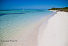 White Sand Beaches and Blue Water - Mellow Ventures Key West - Photo by Pat Bonish