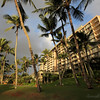 Hotel Kauai Marriott sits on a lovely lagoon with plenty of palm trees.