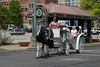 Downtown Memphis - Horse and Buggy Ride