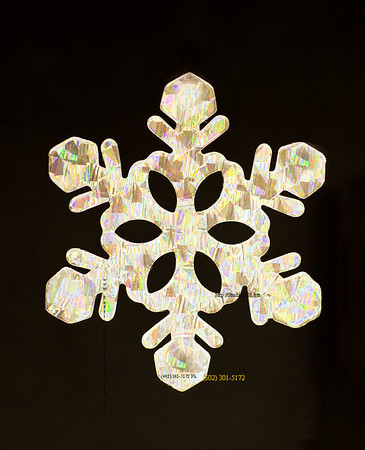 Snowflake ornament 4033c