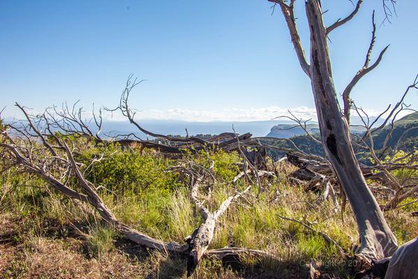 Mesa Verde Landscapes