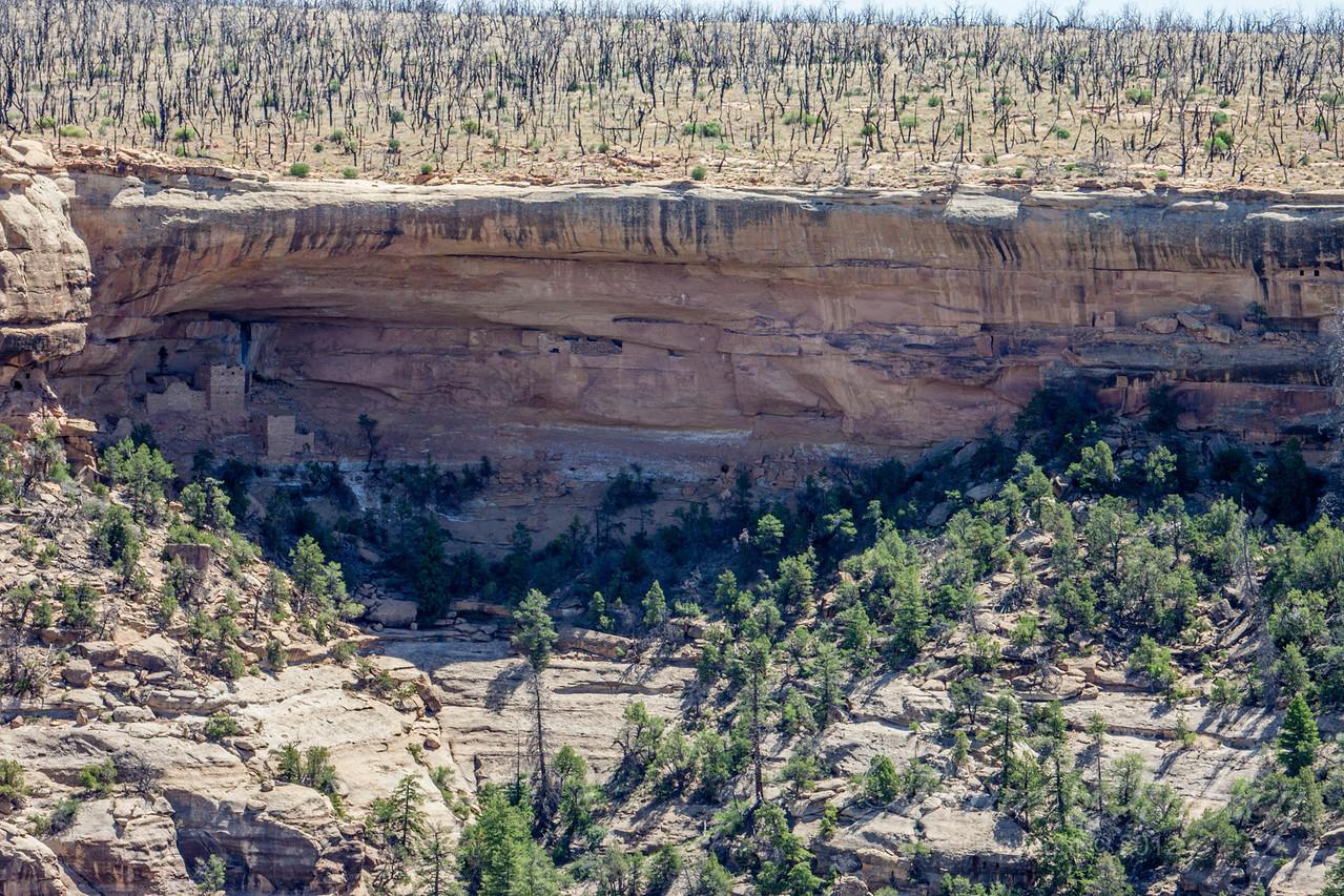 Mesa Verde Landscapes-3452