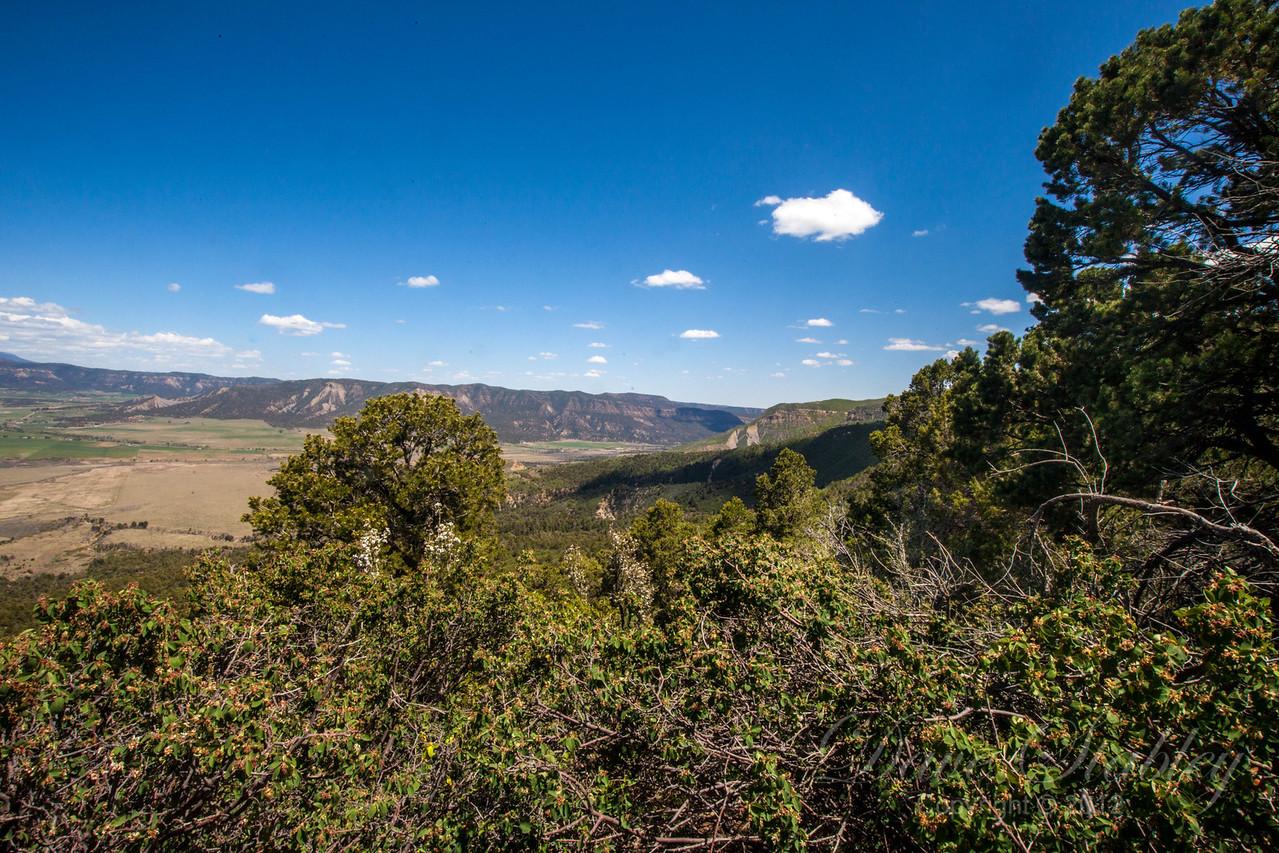 Mesa Verde Landscapes-3600