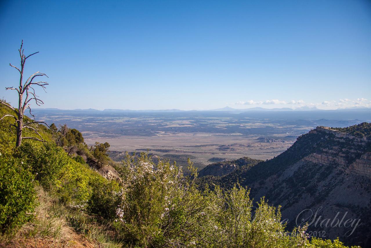 Mesa Verde Landscapes-3311