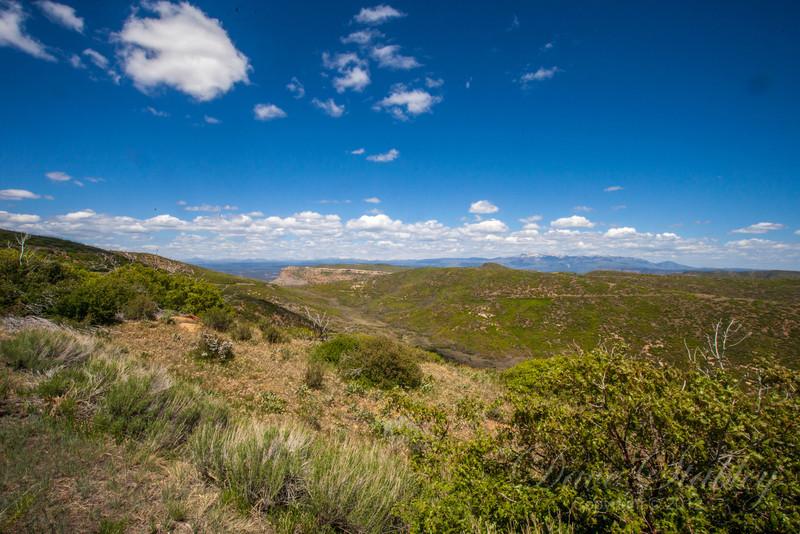 Mesa Verde Landscapes-3597