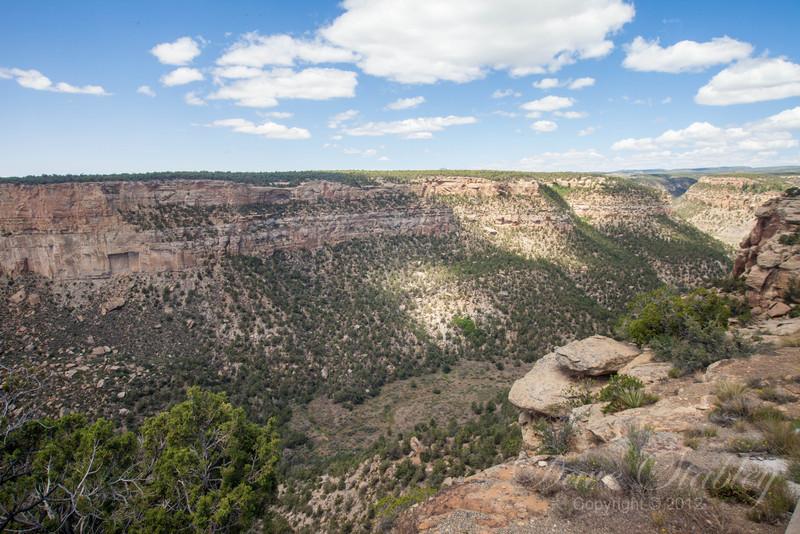 Mesa Verde Landscapes-3485