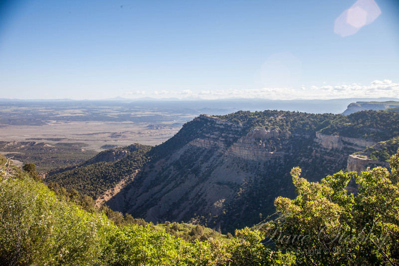 Mesa Verde Landscapes-3328