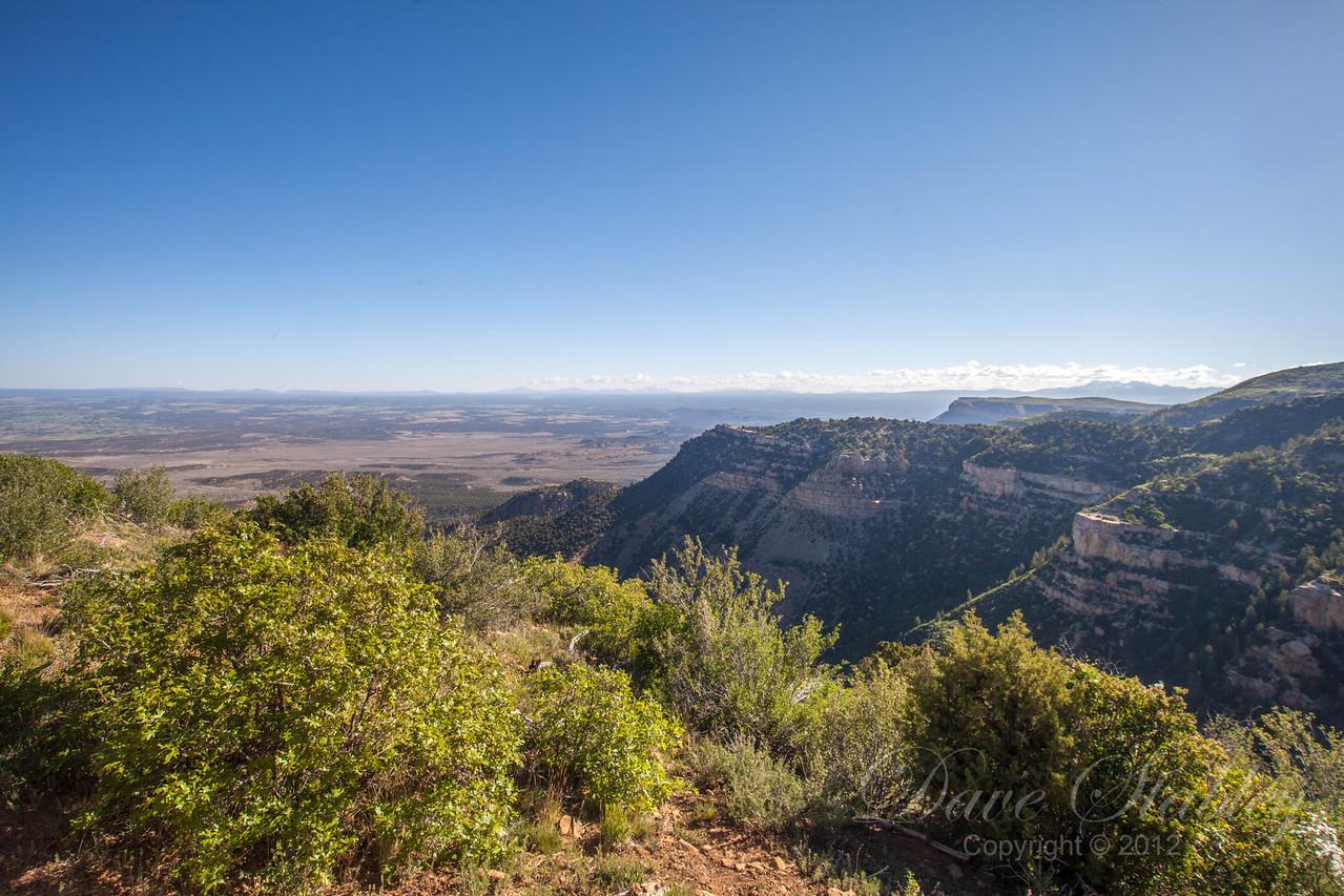 Mesa Verde Landscapes-3322