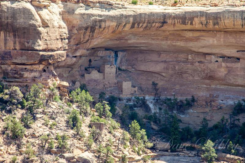 Mesa Verde Landscapes-3450