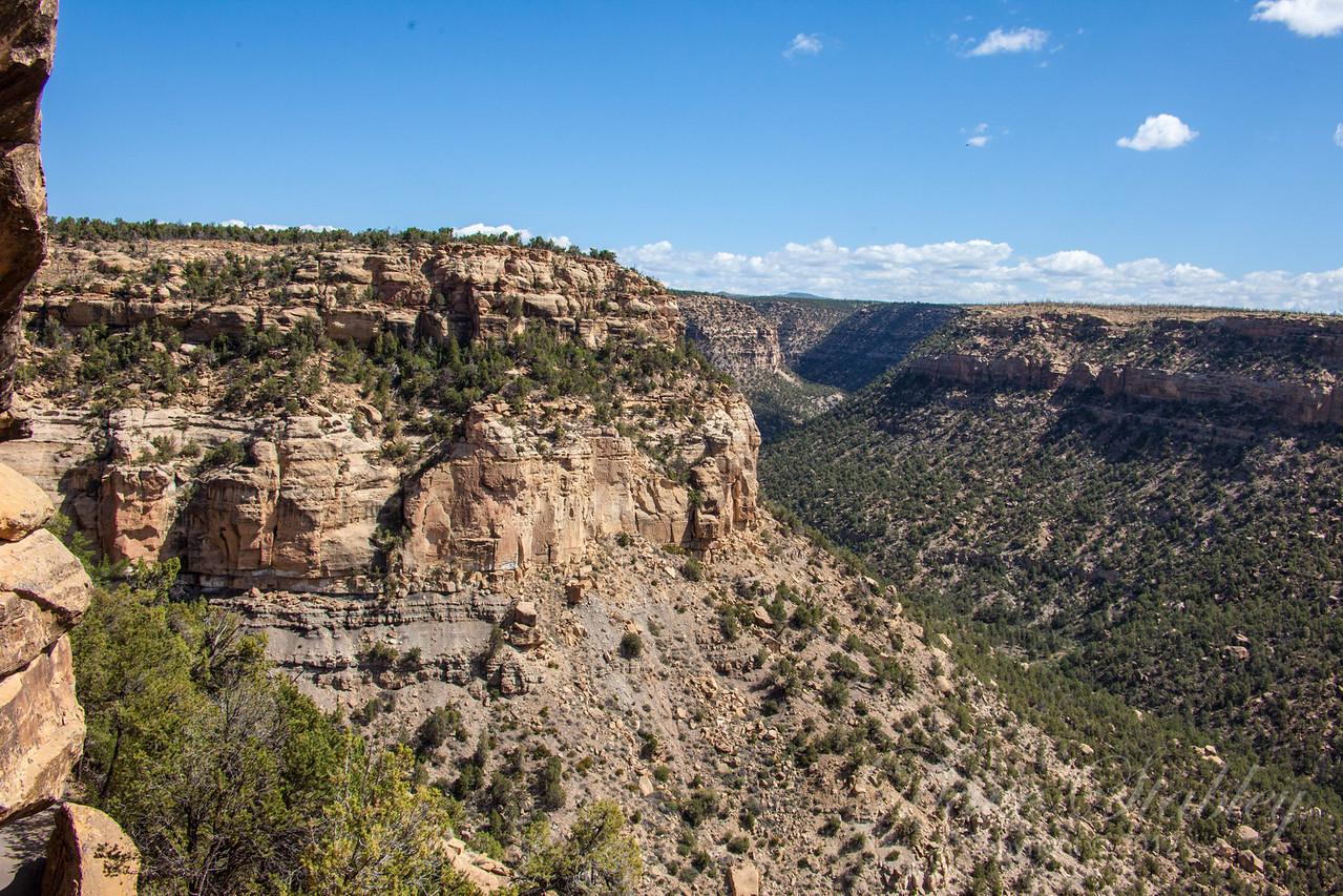 Mesa Verde Landscapes-3395