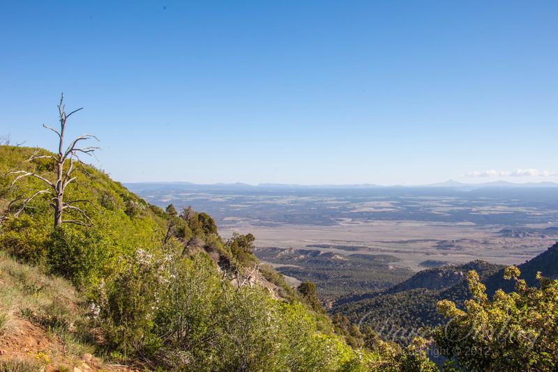 Mesa Verde Landscapes-3314