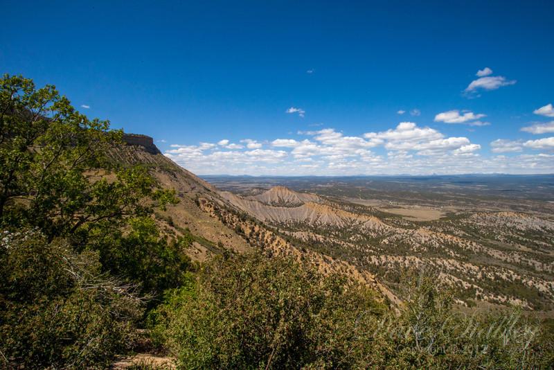 Mesa Verde Landscapes-3608
