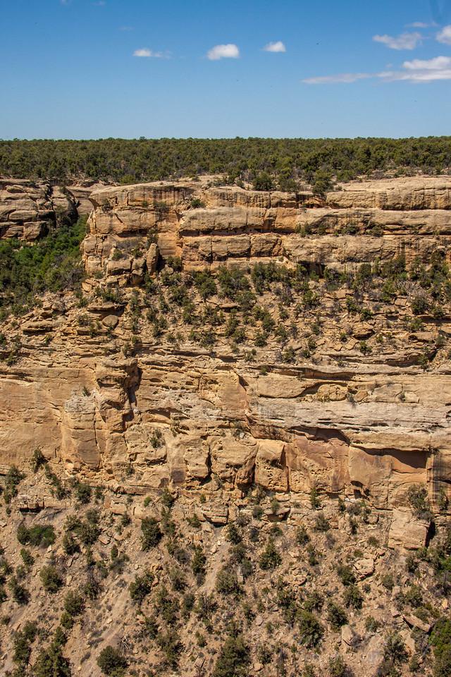 Mesa Verde Landscapes-3447